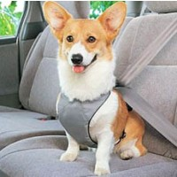 Keep Your Dog Safe - Adjustable Doggy Safety Seat Belt Car Harness