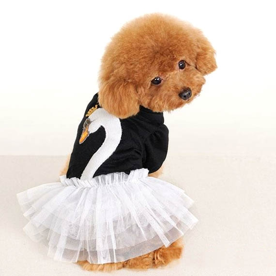 Chiffon Doggy Swan Lake Ballerina Tutu Dance Dress Costume