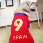 UEFA Spain Number 9 Doggy Football Jersey