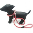 Dog  Leash and Harness for Walking and Training