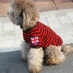 England Flag Badge Striped Tee for Puppy