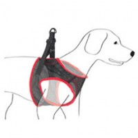 Comfy and Breathable Mesh Dog Harness with Matching Leash Set