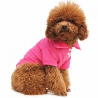 Candy colored Polo Tees for Your Puppy