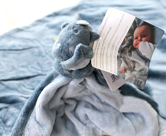 Sweet Dinosaur Baby Fleece Blanket