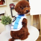 World Cup Argentina Number 10 Doggy Football Jersey