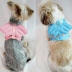 Angel Wings Dog Harness with Matching Leash Set